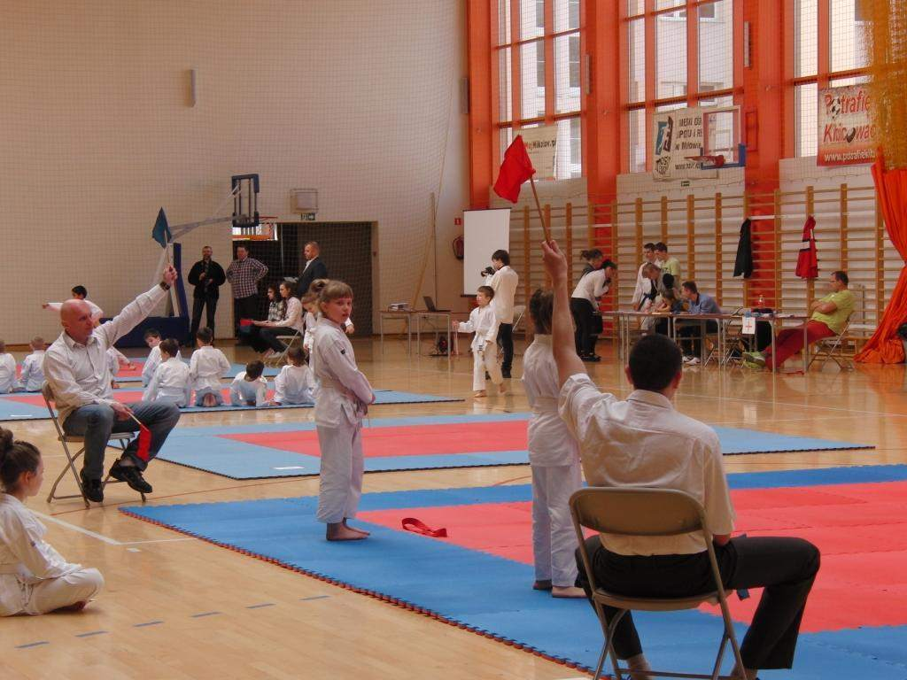 karate_20140408_1637215712