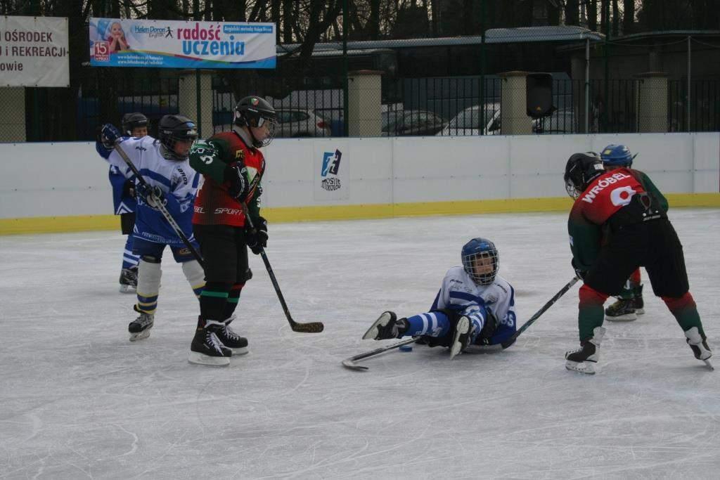 hokej_20141213_1118078739