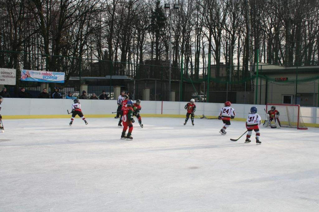 hokej_20141213_1407316140