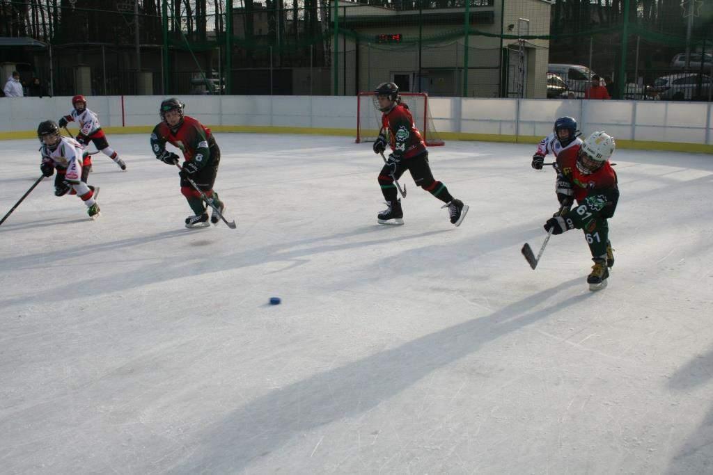 hokej_20141213_1554558243