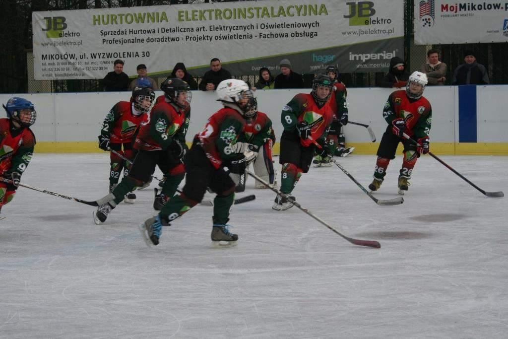 hokej_20141213_1595425183