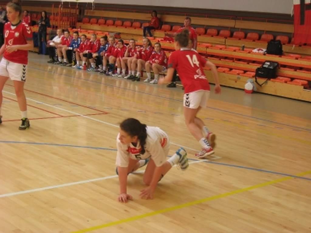 mecz_midzypastwowy_polska_-_austria_6_20130508_1323929561
