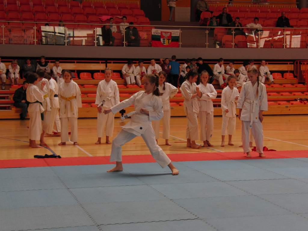 karate_20150330_1329079128