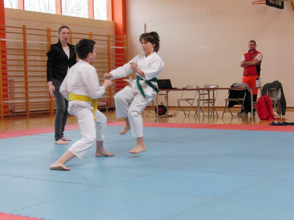 karate_20150330_1657841463