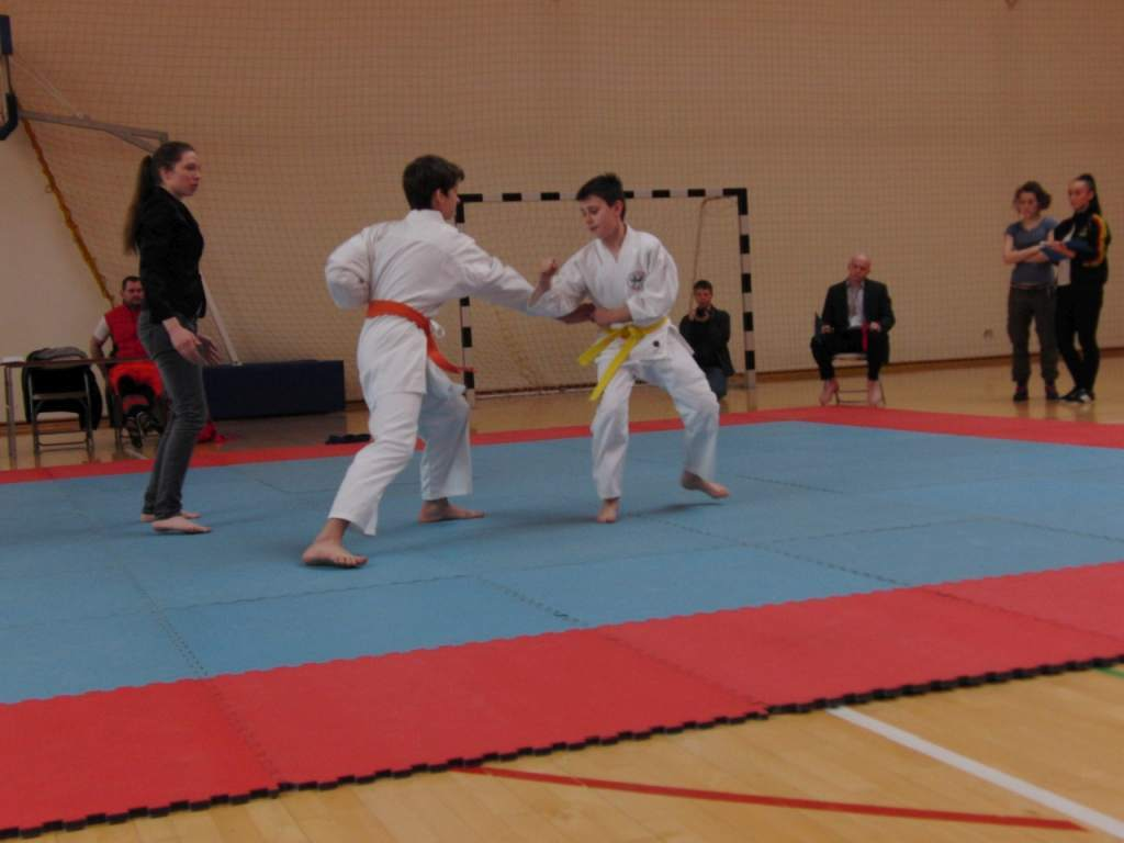 karate_20150330_1867807136