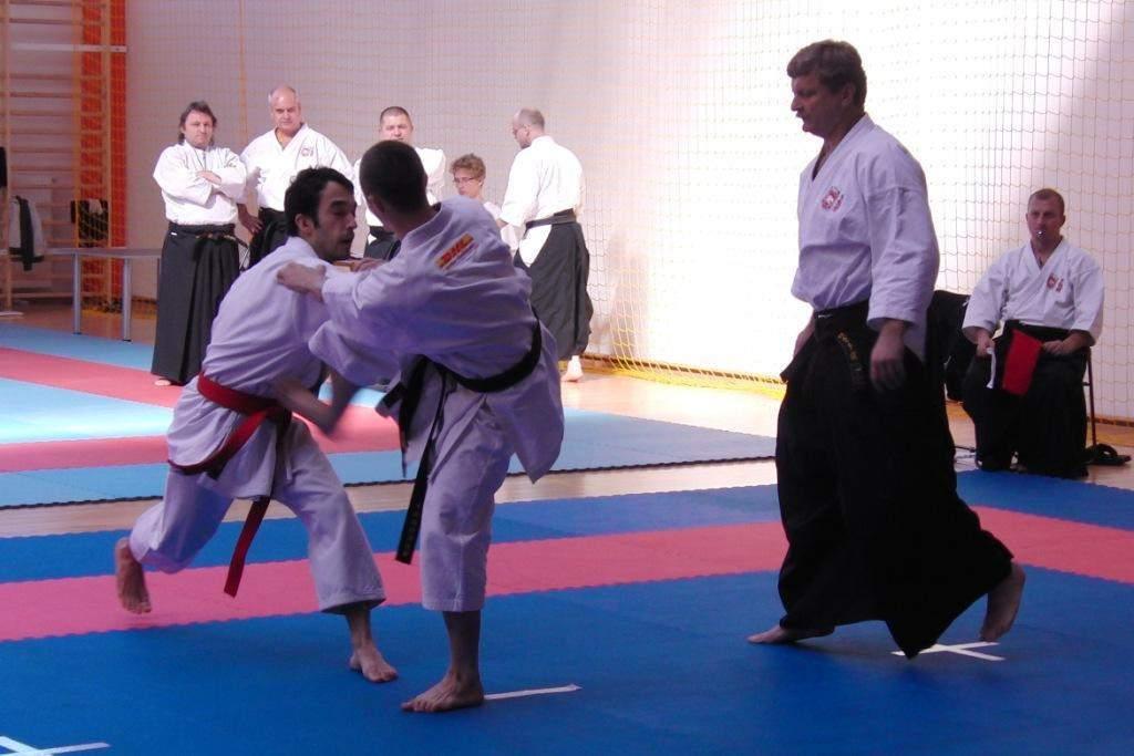 mistrzostwa_polski_karate_21_20130508_2011099730