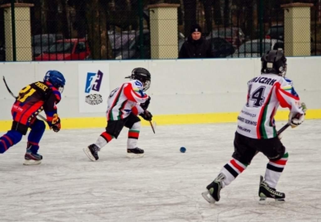 turniej_mini_hokeja_o_puchar_dyrektora_mosir_30_20130508_1965409349