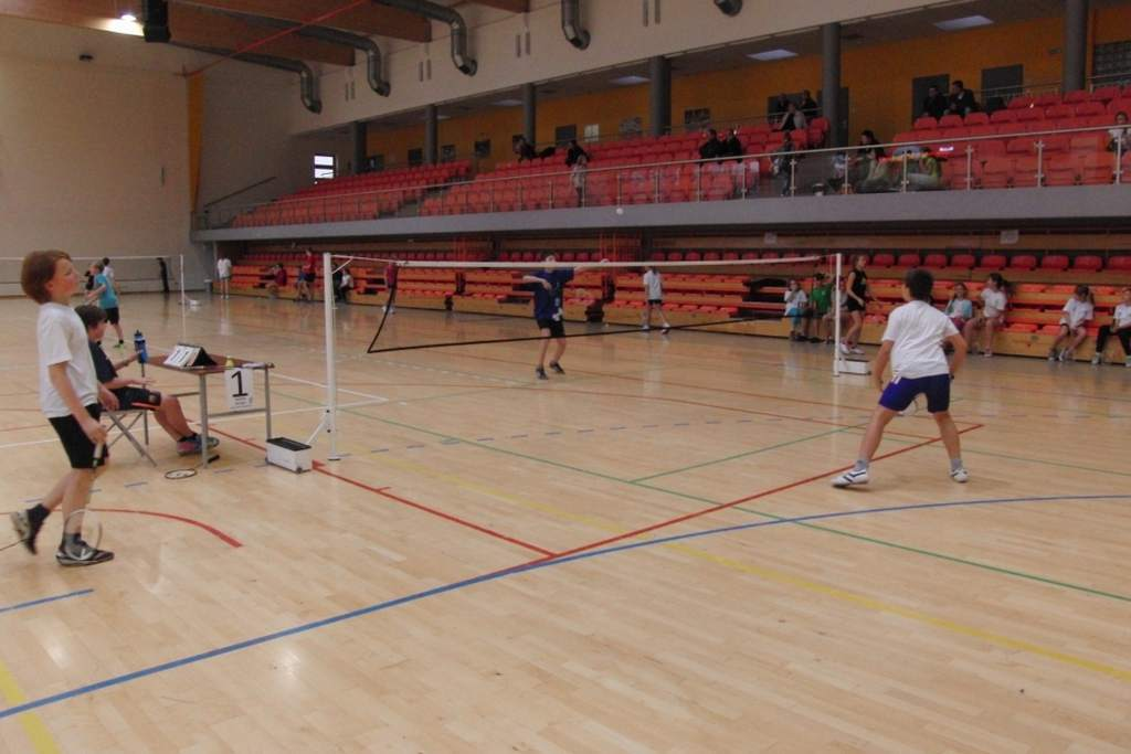 badminton_20131125_1269976543