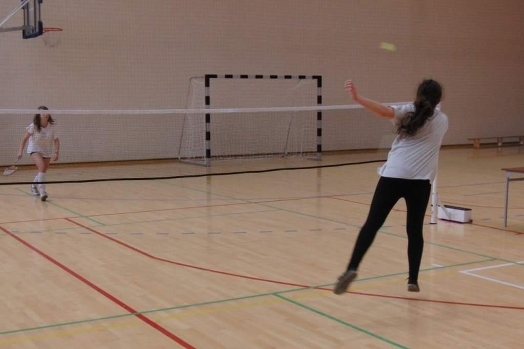 badminton_20131125_1742416877