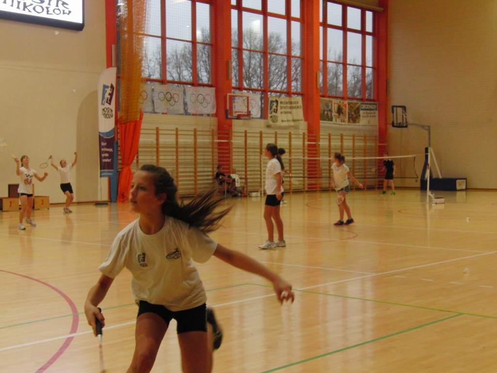 badminton_20141124_1397263113