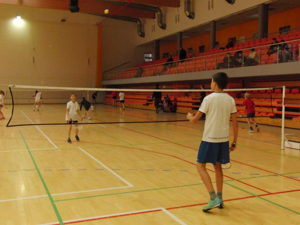 badminton_20141124_1790368186