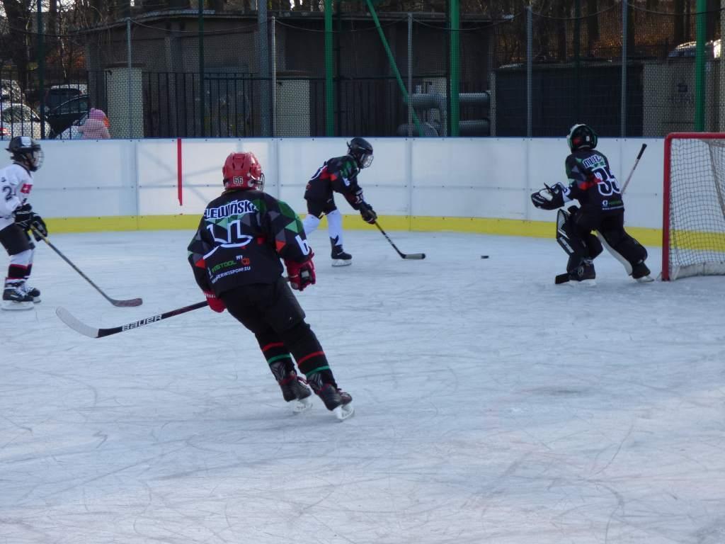hokej_20191221_1602551501