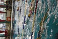 Zawody pływackie zokazji Narodowego Święta Niepodległości